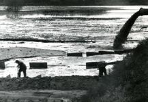 SP_WELPLAAT_042 De ESSO raffinaderij op de voormalige Welplaat is in aanbouw; Mei 1958