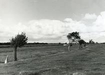 VP_OUDEDIJK_001 Oudedijk gezien vanuit zuidelijke richting met links de polder Jan Huijgens-Hoek en het Spui. Op de ...