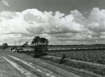 VP_OUDEDIJK_009 Oudedijk gezien vanuit zuidelijke richting met zicht op de Jan Huygen Hoek. Op de achtergrond de ...