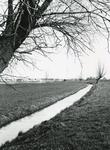 VP_OUDEDIJK_012 De Spuilanden gezien vanaf de Oudedijk, op de achtergrond de woonwijk Kleine Goote; 1989