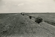 ZL_DIJKVERSTERKING_46 Kijkje op de Zeedijk, richting de Koeneweg. Op de achtergrond de boerderij van Oosthoek; 1961