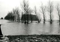 ZL_WATERSNOODRAMP_007 Boerderij van B. Blaak in het water; 1 februari 1953