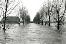 ZL_WATERSNOODRAMP_008 Boerderij van B. Blaak in het water; 1 februari 1953