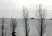 ZL_WATERSNOODRAMP_048 De ondergelopen polder, gezien vanaf doerderij van Maarten Blaak in het water; Februari 1953