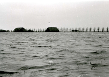ZL_WATERSNOODRAMP_049 De boerderijen van de gebroeders Blaak in het water, links Bouwlust van Maarten Blaak; 1 februari 1953