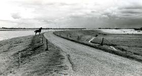 ZW_MAASDIJK_002 Maasdijk met links het Brielse Meer en de contouren van de industrie op Rozenburg; ca. 1960