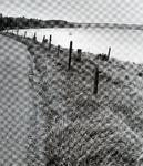 ZW_MAASDIJK_010 Maasdijk met het Brielse Meer en op de achtergrond de Brielse Brug; ca. 1995