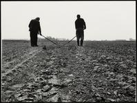 FOTO_GF_C166 Op de akker waar spruiten groeien, schoffelen boeren het onkruid weg; 1980