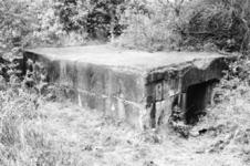 ATW002 Restanten van de Atlantikwall op het Gors op de hoek van de Heindijk en de Bollaarsdijk. Een bunker die ...