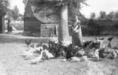 NLL039 Neeltje Arendje Nieuwland (1895-1971), echtgenote van Arie Peters, voert kippen en eenden; ca. 1940