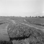 C2031 De onverharde Lageweg in Vierpolders; maart 1989