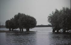 3528 Deventer - SpoorbrugHoog water IJssel voorjaar 1982.