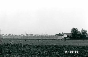 F011572 Kassencomplex voor de tuinbouw in de Koekoek te IJsselmuiden.