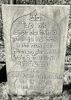 F003945 Grafsteen van Lea de Wilde-van Amerongen, geboren 21 juli 1821/21 Tammoez (5)581). - H(ier is) b(egraven) de ...