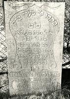F003949 Grafsteen van Bendina Vos-Lievendag, geboren 14 december 1825/23 Kislew (5)585). - Ontsluit mij de poorten der ...