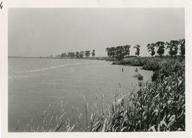 F006161 De rivier de IJssel nabij houthandel Kramer aan de IJsseldijk, rechts bij de bomen is de Kamperstraatweg.