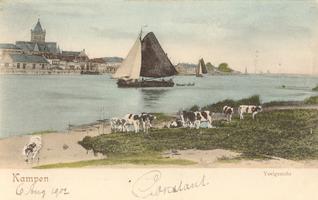 F000116 Gezicht op de Buitenkerk en de IJssel rond 1900.