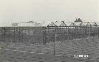 F011573 Kassencomplex in de Koekoek te IJsselmuiden.