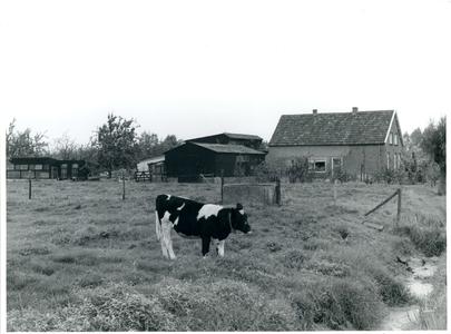 De voorkant van de boerderij