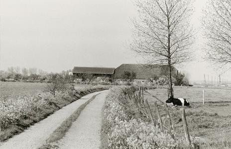 Langhuisboerderij Julianahoeve -zijaanzicht