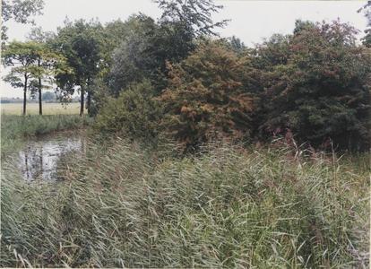 Kasteelterrein Schalkwijk. Gedeelte van het begroeide kasteelterrein en de omgrachting.