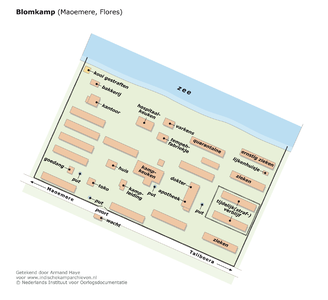 "Plattegrond van het Blomkamp bij Maoemere, Flores <a href=""http://files.archieven.nl/963/f/kampen/floresblomkamp.pdf"" target=""_blank"">(pdf)</a>"