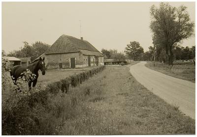 Vlierden. Brouwhuiseweg, gezien in de richting Belgeren, vanaf Brouwhuis